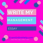 Write My Management Essay